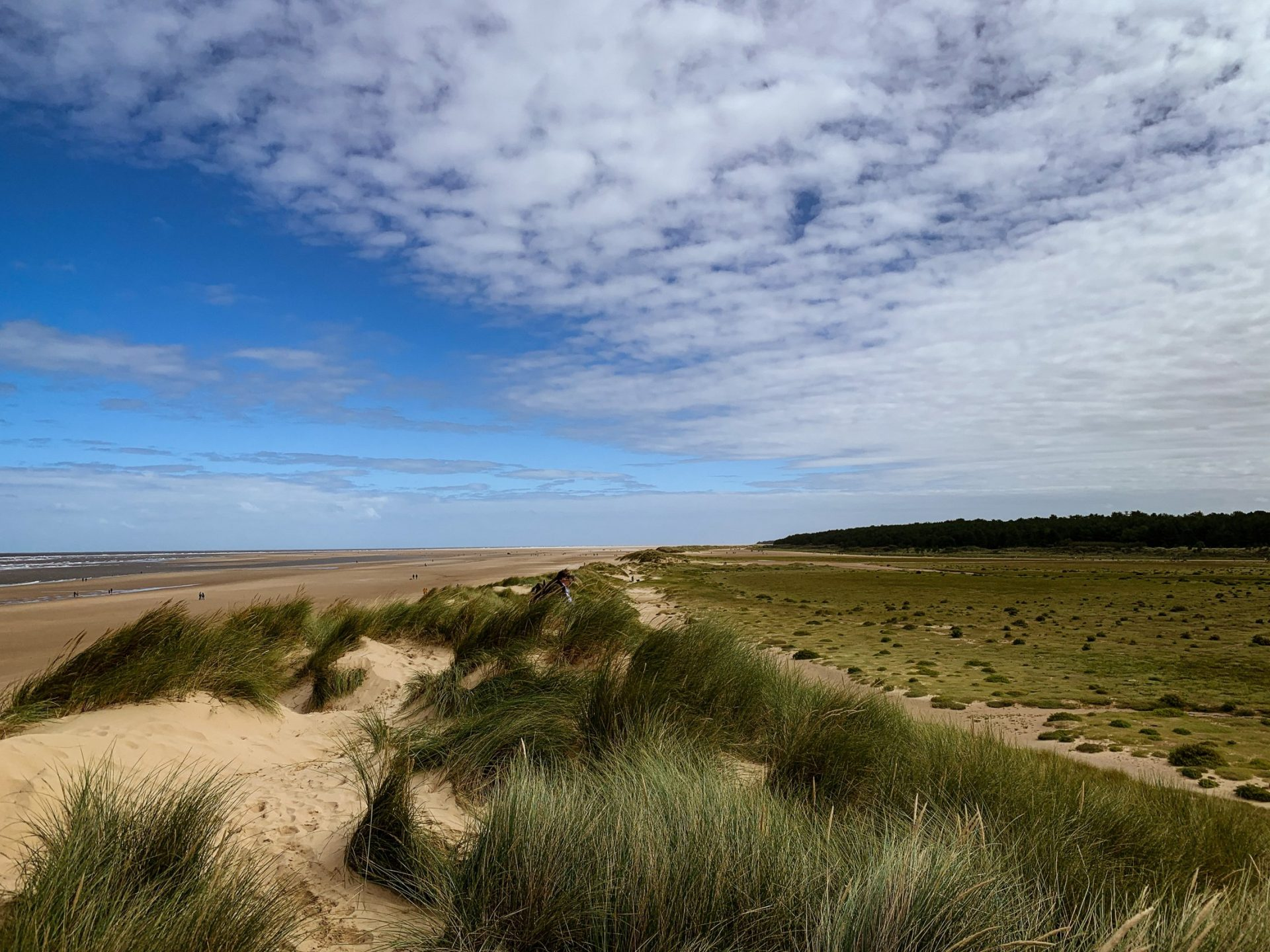 Picture of Norfolk beach and greenery